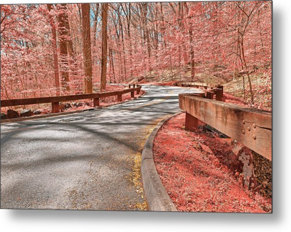 Opalescent Forest Road Metal Print