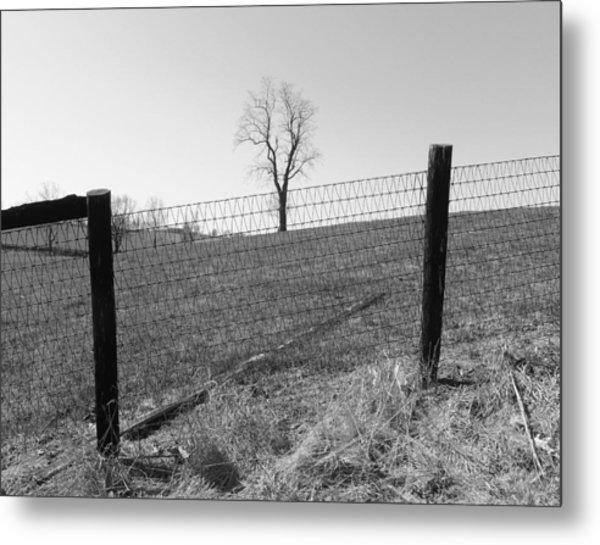 Open Land Metal Print