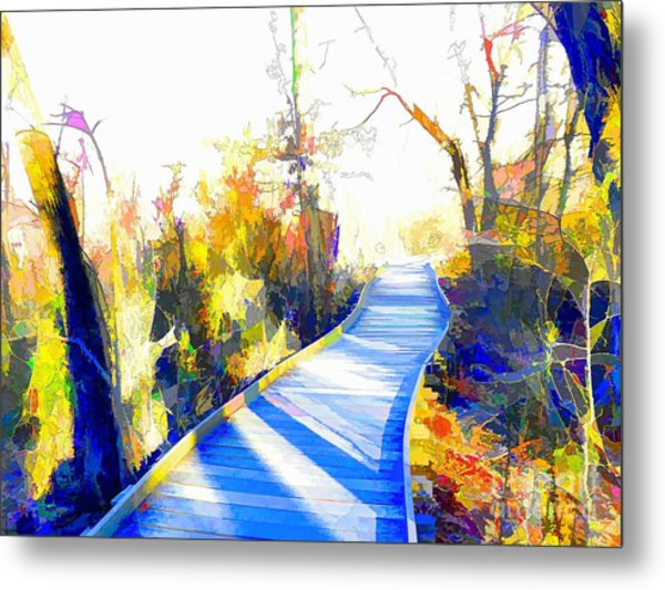 Open Pathway Meditative Space Metal Print