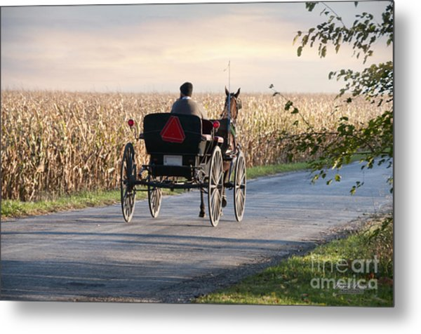Open Road Open Buggy Metal Print