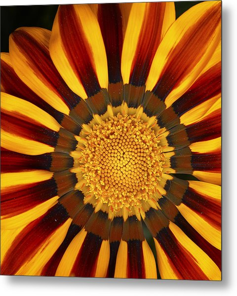 Orange And Yellow Over And Over Metal Print