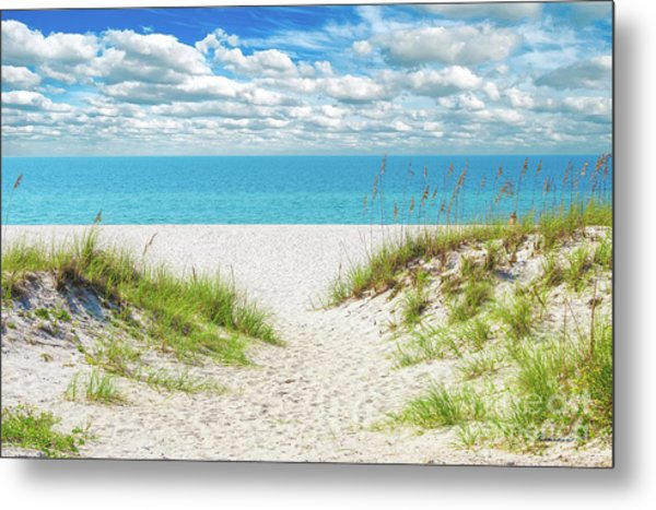 Orange Beach Al Seascape 1086a Metal Print