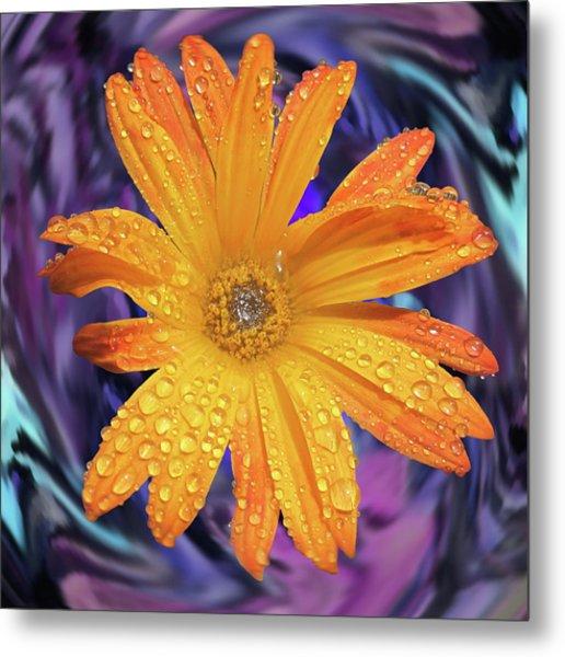 Orange Daisy Swirl Metal Print
