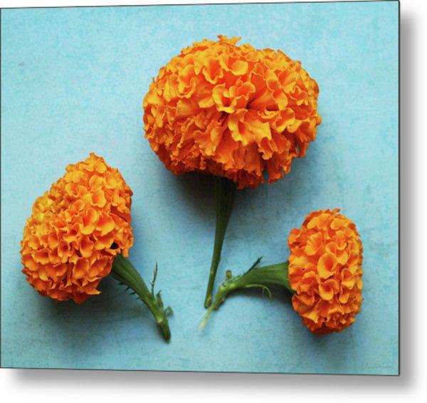 Orange Marigolds- By Linda Woods Metal Print