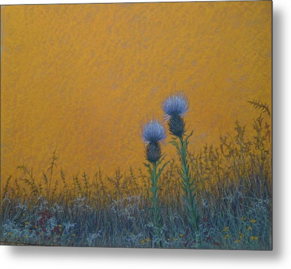 Orange Sky With Thistle Metal Print