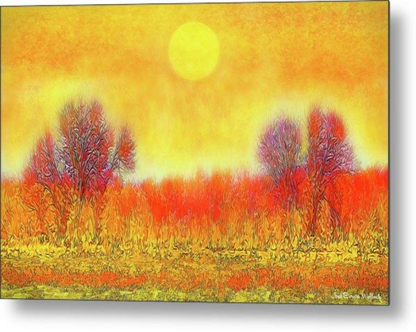 Orange Sunset Shimmer - Field In Boulder County Colorado Metal Print