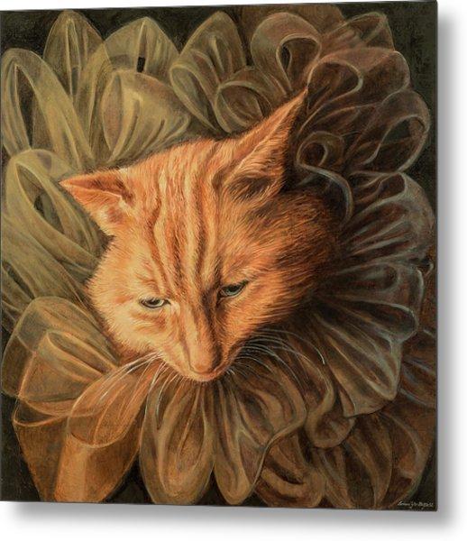 Orange Tabby Metal Print by Barbara Tyler Ahlfield