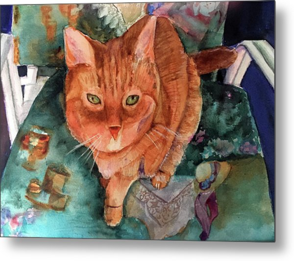 Orange Tabby Metal Print