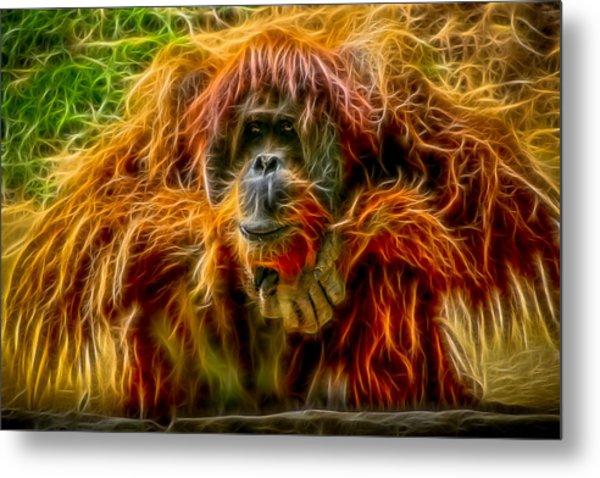 Orangutan Inspiration Metal Print