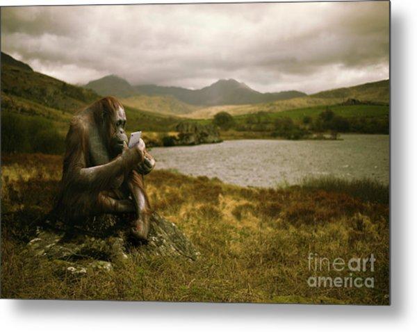 Orangutan With Smart Phone Metal Print