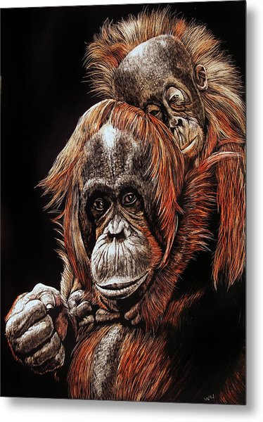 Orangutans Two Metal Print