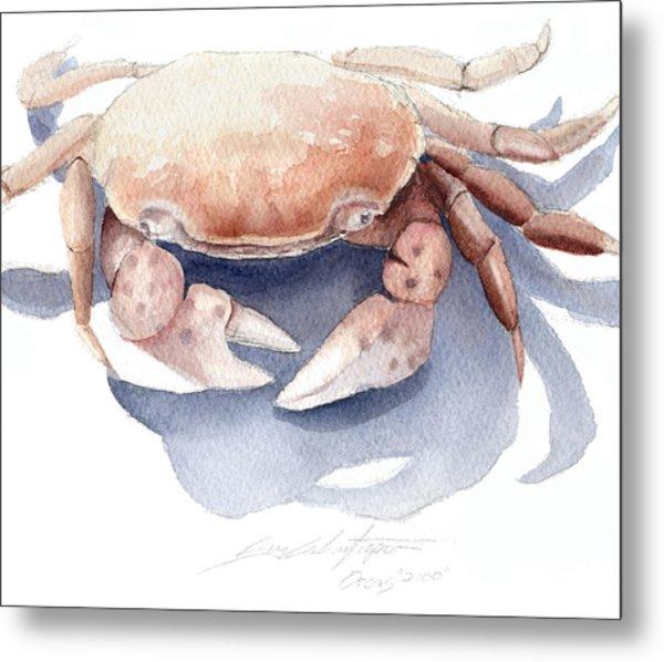 Orcas Crab Metal Print