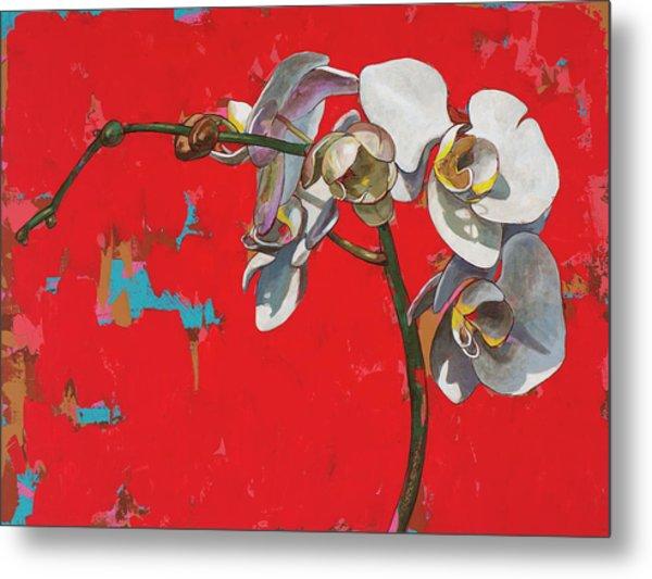 Orchids #1 Metal Print