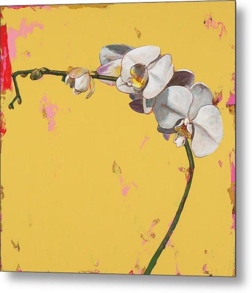 Orchids #3 Metal Print