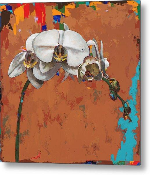 Orchids #4 Metal Print