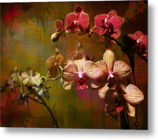 Orchids On Silk Metal Print