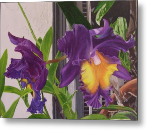 Orchids Metal Print by Robert Silvera