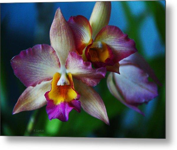 Orchids - Trio Metal Print