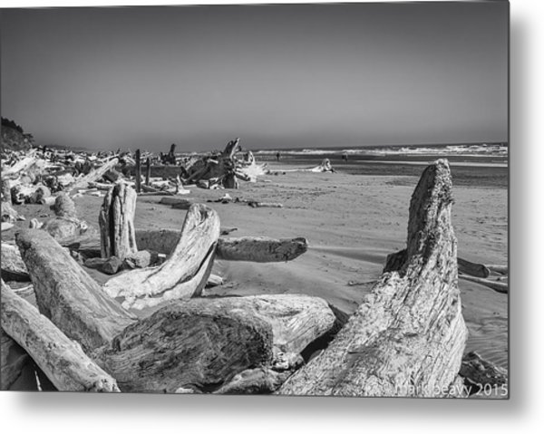 Oregon Beach Driftwood Metal Print