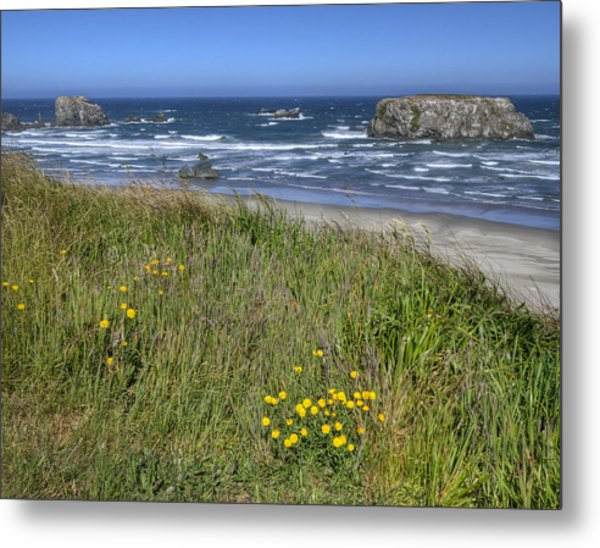 Oregon Beauty Metal Print