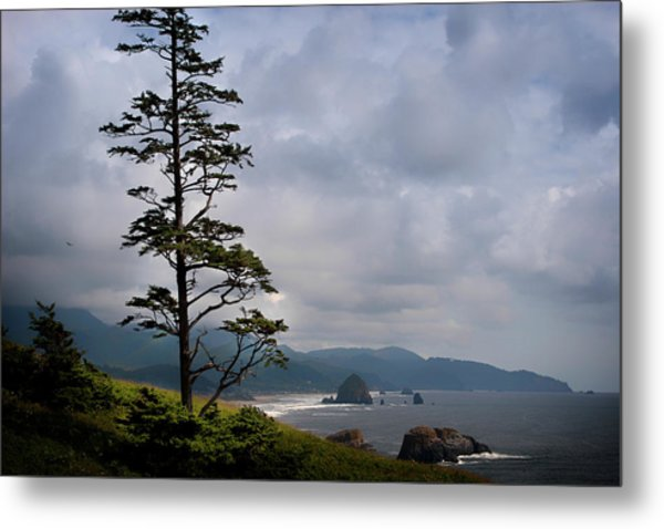 Oregon Ocean Vista Metal Print