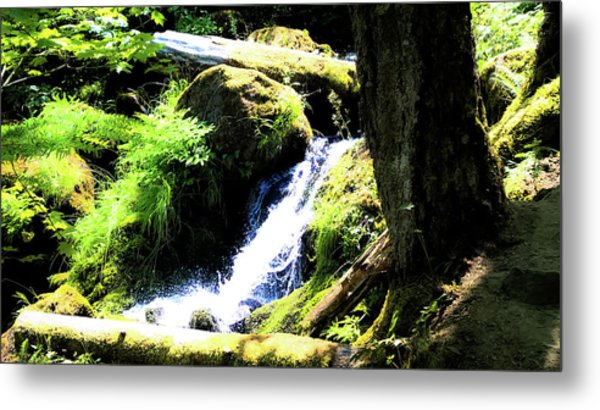 Metal Print featuring the photograph Oregon Spring by Pacific Northwest Imagery