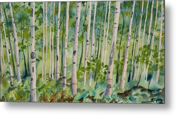 Original Watercolor - Summer Aspen Forest Metal Print