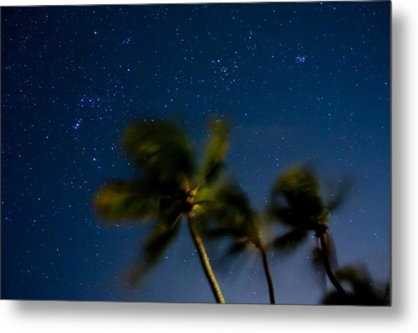 Orion And Windswept Palms Metal Print