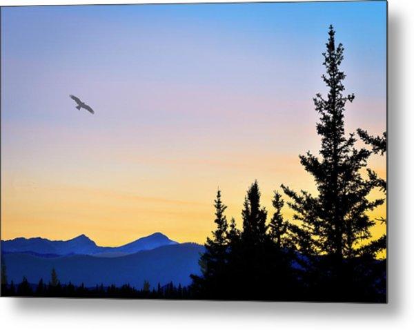 Osprey Against The Sunset Metal Print