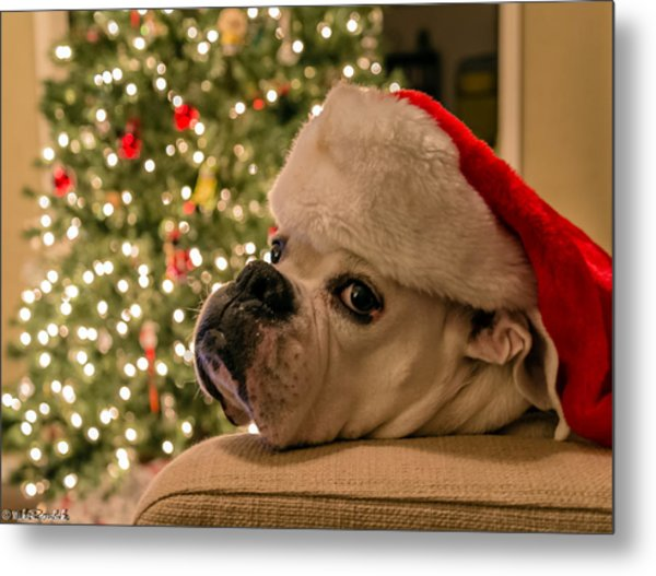 Otis Claus Metal Print