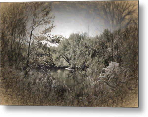Otter Creek  Metal Print