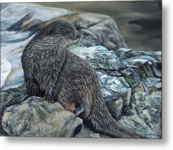 Otter On Rocks Metal Print