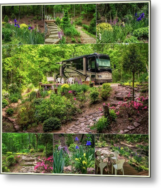 Our Woods In Nc Metal Print