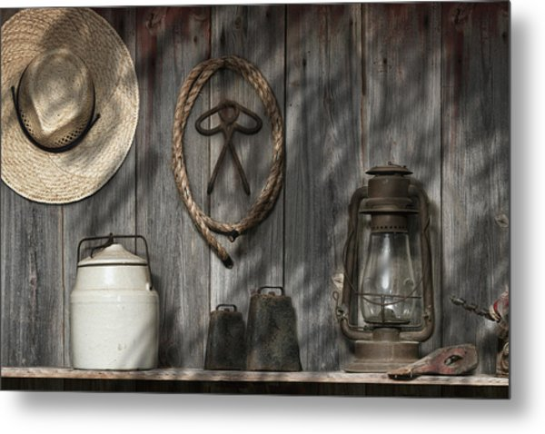 Out In The Barn IIi Metal Print