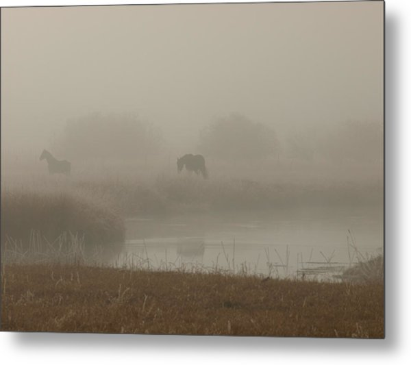 Out In The Fog Metal Print