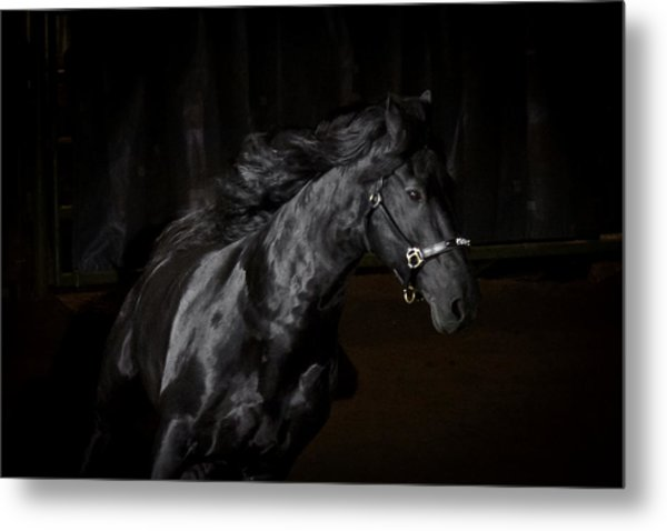 Out Of The Darkness Metal Print