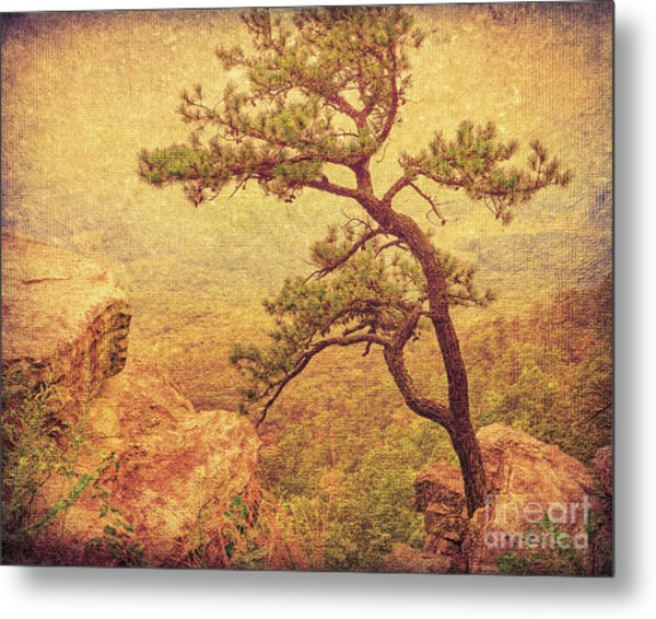 Out Of The Rock Metal Print