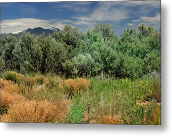 Out On The Mesa 1 Metal Print