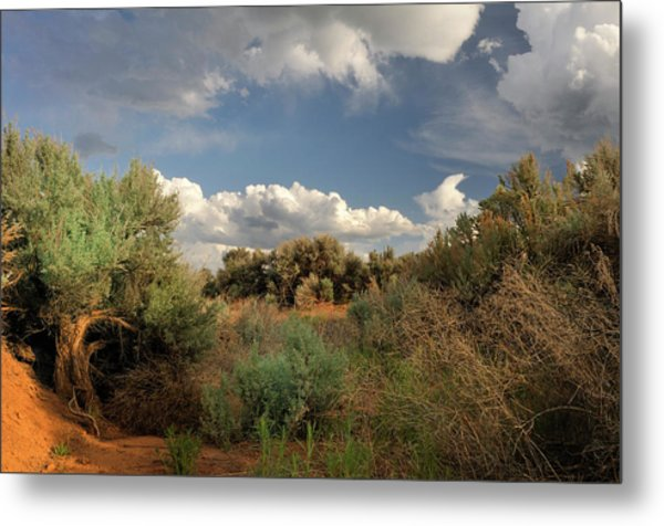 Out On The Mesa 4 Metal Print