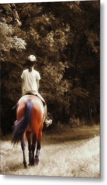 Out On The Trail Metal Print by JAMART Photography
