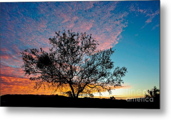 Outback Sunset Pano Metal Print