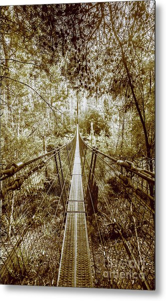 Over Australian Native Forests Metal Print