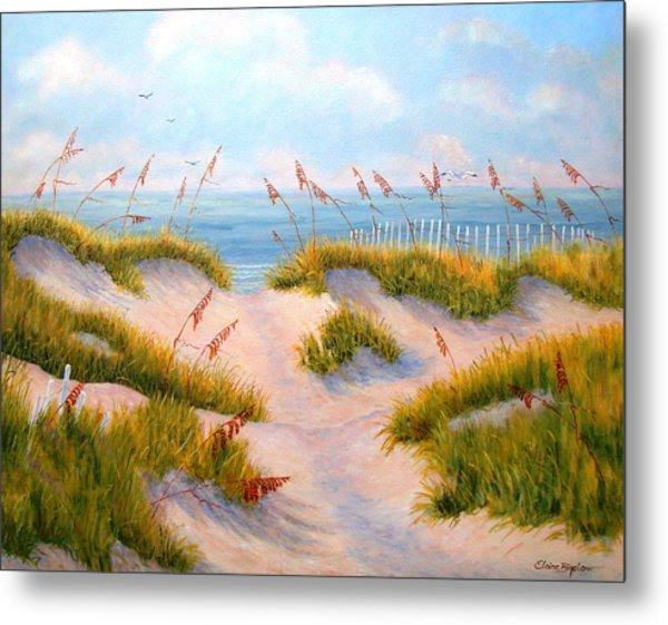 Over The Dunes Metal Print by Elaine Bigelow