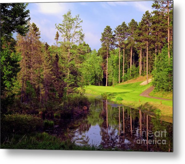Over The Pond Metal Print