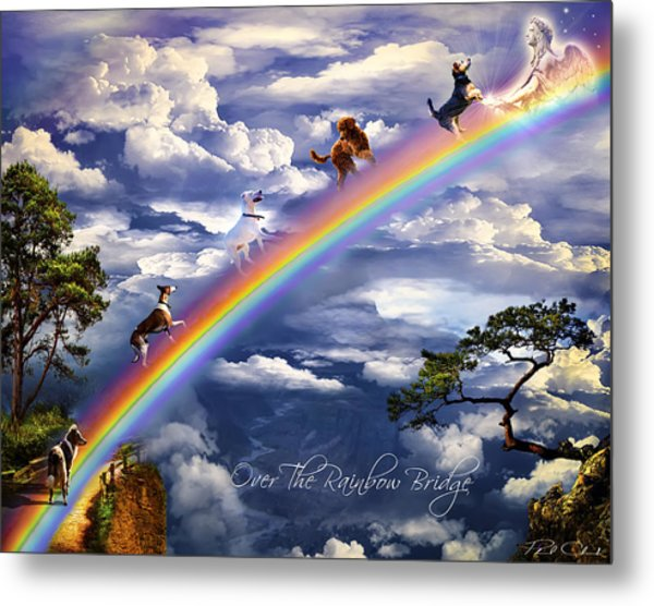 Over The Rainbow Bridge Metal Print