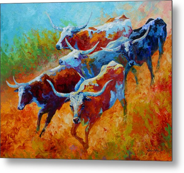 Over The Ridge - Longhorns Metal Print