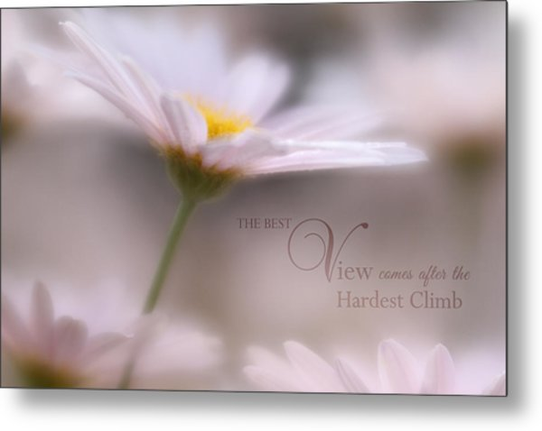 Over The Top With Message Metal Print