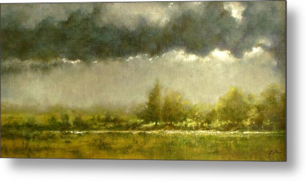 Overcast Day At The Refuge Metal Print