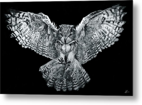 Owl 1 Metal Print