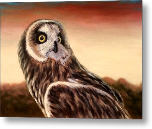 Owl At Sunset Metal Print